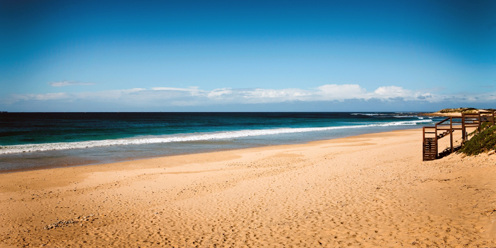 My top 5 south african beaches discover south africa blog - What to do in port elizabeth south africa ...